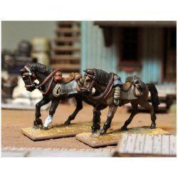DMH - Riderless horses