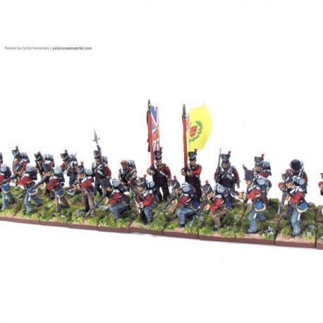 Napoleonic  British Infantry Pro-Painted  by Carlors Fernández