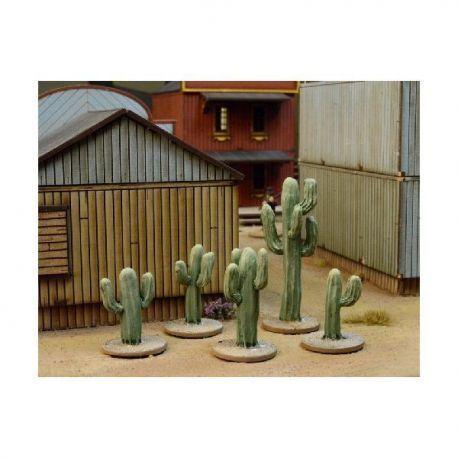 Dead Man's Hand Cacti