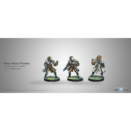 KOSUIL ASSAULT PIONEERS