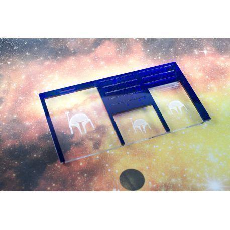 Space Dashboard MERCS