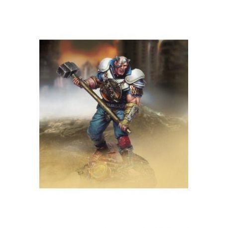 Brute (Metallic armor and Heavy mace)